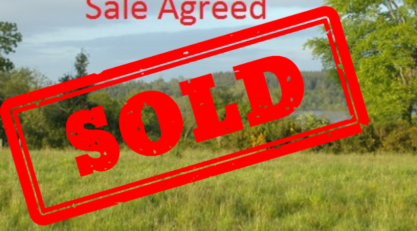 7.5 Acre Site, Curlay, Aughnacliffe, Co.Longford