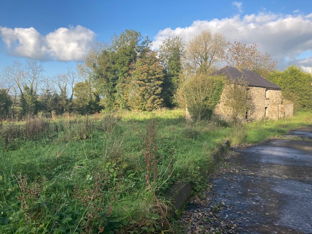Site with old Cottage  For Sale , Ballydaly ,Aughnagarron ,Granard,Co.Longford